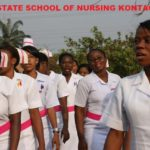 Niger state school of Nursing
